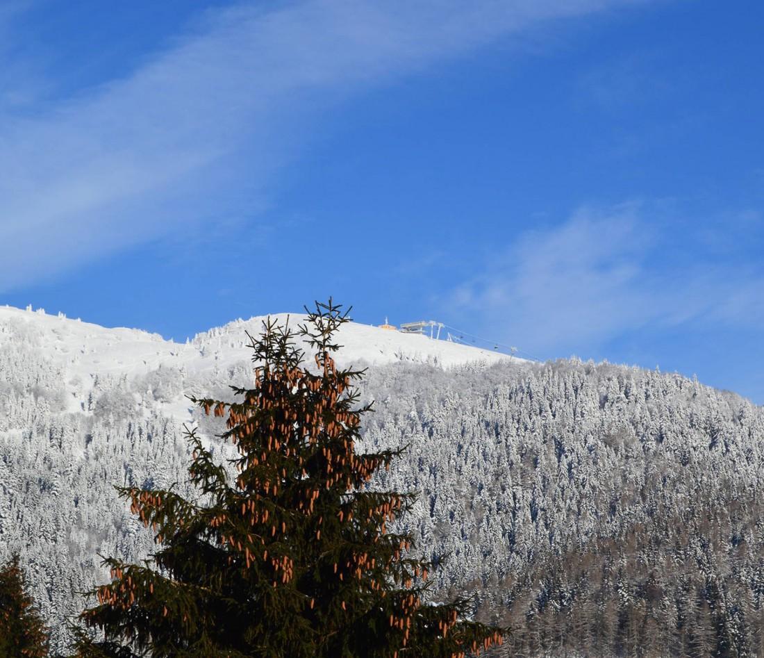 Výhľad z balkóna na Novú hoľu